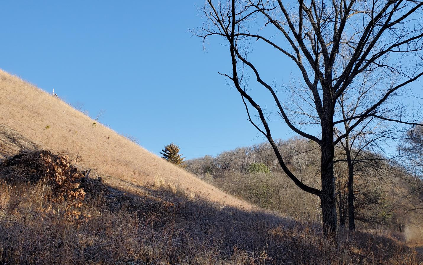 View of Boscobel Bluffs nature preserve