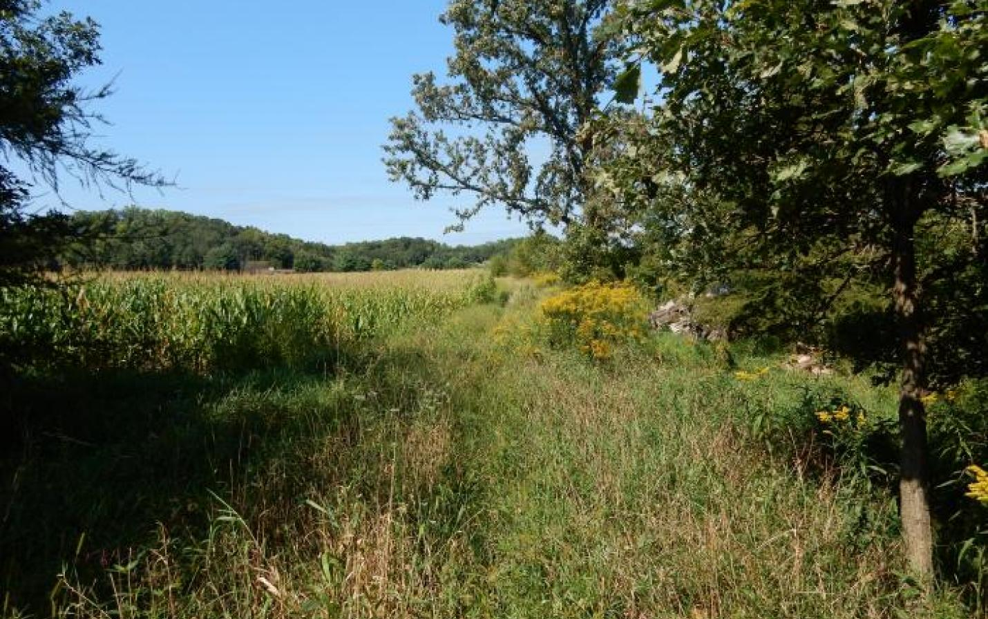 farmland with woodland protected