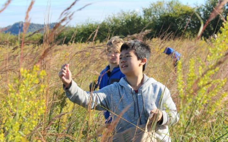 students collecting prairie seeds